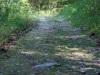 Gillis Falls Park